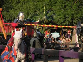 Labor Day Joust 1 by TheMightyQuinn