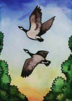 Untitled Geese by rachelillustrates