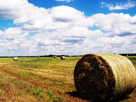 hay bale and clouds by szdora91
