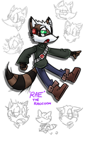 Rae the Raccoon (Character info in desc) by JJpros
