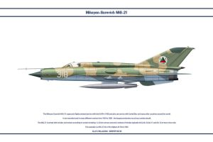 MiG-21 Afghanistan 2 by WS-Clave