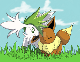 Skymin and Eevee by MizunoMirai