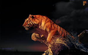Powerful Tiger in Water by TheSayGi