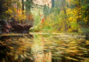 Parade of Autumn by PeterJCoskun
