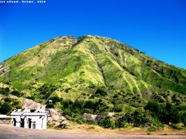 Bromo - Lonely Green by ailend