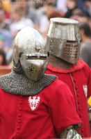 Bnfest 2012 - Knight tournament II by RivenPine