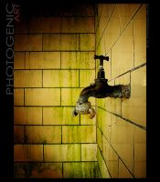 The Faucet by photogenic-art