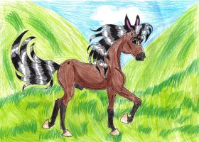 Cee cantering.. by Horseyluver957