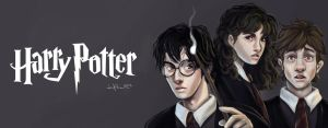 Harry Potter Trio by jericilag