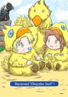 "Received ""Chocobo Suit"" by ViralJP"