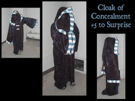 Cloak of Concealment by crazed-fangirl