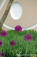 Chelsea Flower Show 9 by lonesomeaesthetic