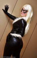 Black Cat 10 by Insane-Pencil