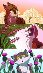 Sweet, Rose and Thistle by ColacatintheHat
