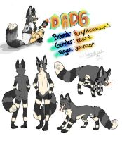 Commission Ref Sheet of Dadg by Dealupus