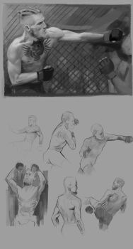 Anatomy and Movement Practice - Conor McGregor by FilipJKD