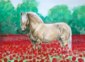 Fjord Horse in a Poppy Field by bleistiftkind