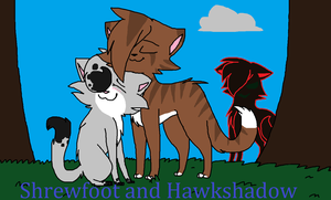 Shrewfoot and Hawkshadow by xXDawnsoulXx