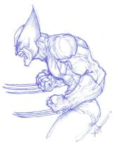 Wolverine 12 by ChrisOzFulton