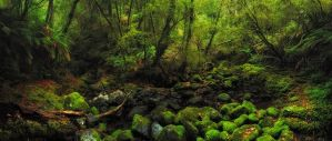 The Green Gully by DrewHopper