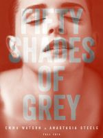 Fifty Shades of Grey Teaser Poster #1 by DrMeacham