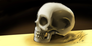 skull by Vinsuality