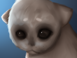 I ACCIDENTALLY ERASED THE EYE/NOSE LAYER AND THEN by Ghost-OfStarman