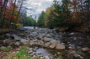 White Mountains  Fall Foliage  202 by FairieGoodMother