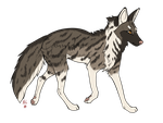 .: Fox Adoptable :. [CLOSED] by Cannidae