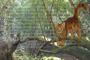 Wild Cats .SchoolProject by Eaglefoot