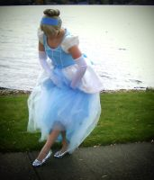 And Look! Glass Slippers! by senior007