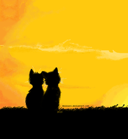 Sunset kittens. by Unsecure