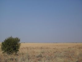 Central Free State, South Africa by PunkBunny84