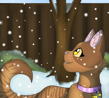 TSC-.:Activity Check:.-It's Snow time by Chocoecaramell