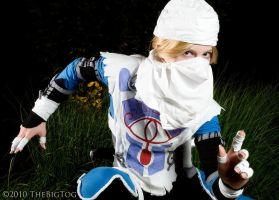 Sheik Goes Ninja by TheBigTog