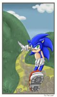 .: SONIC - In The Lead :. by carriepika