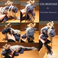 Chi Montage by Feather-Dragon