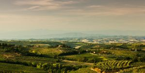 San Gimignano by GeorgeSiamanis