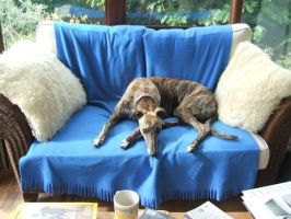 'This seat is taken' by x----eLLiE----x