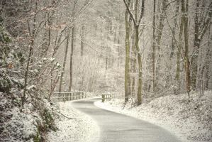 Winter's Return by Ibilicious
