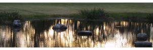 Zen Buddhism on a Golf Course by taeliablack