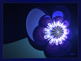 Blue Flower Power by baba49