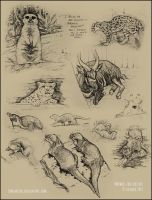Marwell Sketches by Panimated