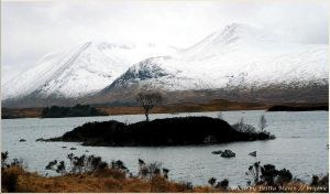 scottish wintertime by brijome