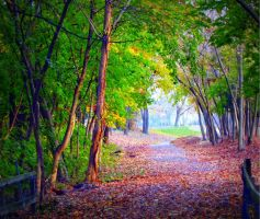 Autumn Trail by RealityIntolerant