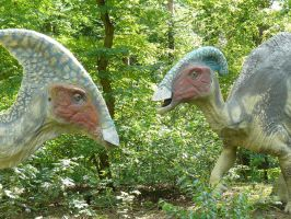 parasaurolophus by omg-stock