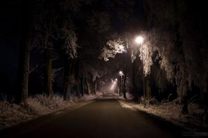 Foggy Road by Robiq