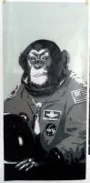 Space Monkey by AmineShow