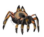 Day 29- Mexican Redknee Tarantula by Cloudwilk