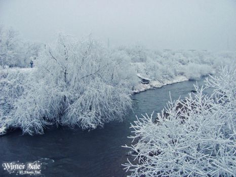 Winter Tale - Blue River I by DionisDei